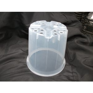 one clear plastic pots with holes at the bottom