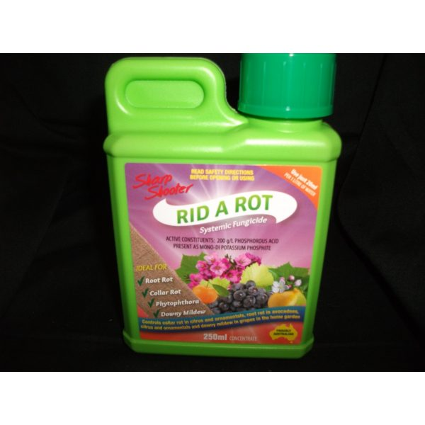 a small jug of rid and rot fungicide